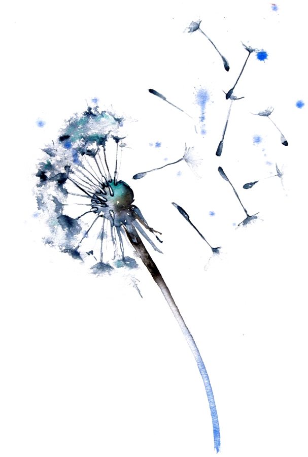 Watercolor Painting Dandelion - By Artollo