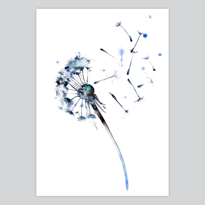 watercolor painting dandelion by artollo. Black Bedroom Furniture Sets. Home Design Ideas