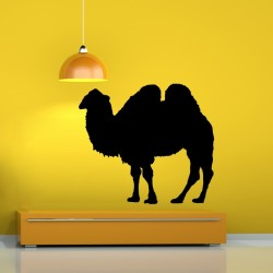 Camel Stickers For Walls