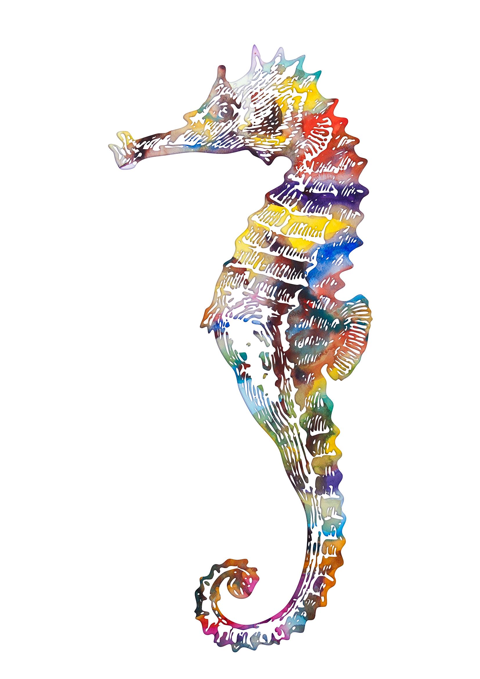 Beautiful Seahorse Downloadable Picture Watercolor Poster By Artollo
