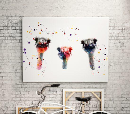 Ostriches Print