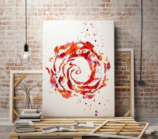 Art print Rose