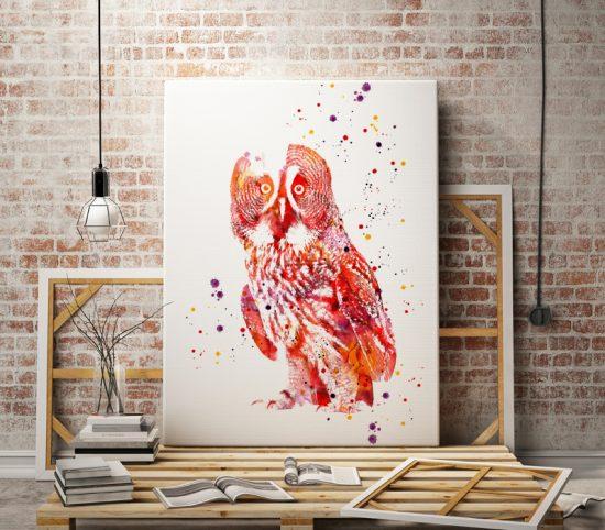 Curious Owl print